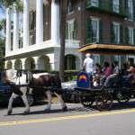 carriage tour