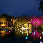 Sculptures and lights